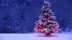 ক্রিসমাস (Christmas)