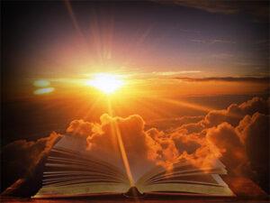 আমি ইসলাম গ্রহণ করতে বাধ্য হয়েছি